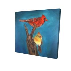 Canvas 24 x 24 - 3D - Birds on a branch