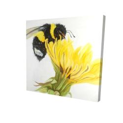 Canvas 24 x 24 - 3D - Little bumblebee on a dandelion