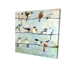 Canvas 24 x 24 - 3D - Small colorful birds