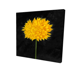 Canvas 24 x 24 - 3D - Yellow chrysanthemum