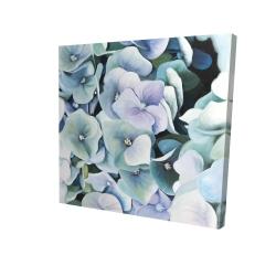 Canvas 24 x 24 - 3D - Hydrangea plant