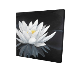 Canvas 24 x 24 - 3D - Lotus flower with reflection