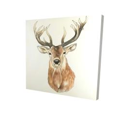 Canvas 24 x 24 - 3D - Front deer portrait