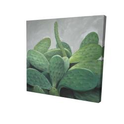 Bouquet de cactus