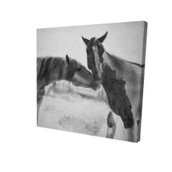 Canvas 24 x 24 - 3D - Horses lover