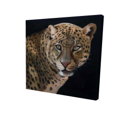 Canvas 24 x 24 - 3D - Realistic fierce leopard