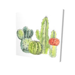 Canvas 24 x 24 - 3D - Gathering of small cactus