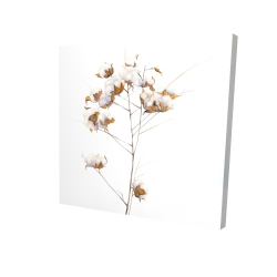 Canvas 24 x 24 - 3D - Cotton flowers branch