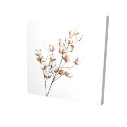 Canvas 24 x 24 - 3D - A branch of cotton flowers
