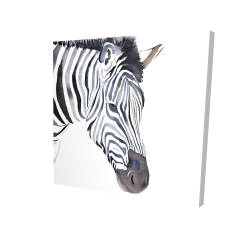 Canvas 24 x 24 - 3D - Zebra
