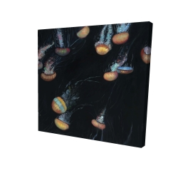 Canvas 24 x 24 - 3D - Colorful jellyfishes swimming in the dark