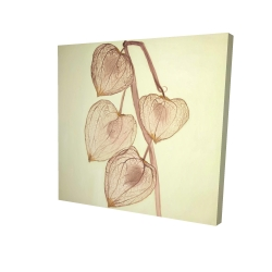 Canvas 24 x 24 - 3D - Growing ground cherries