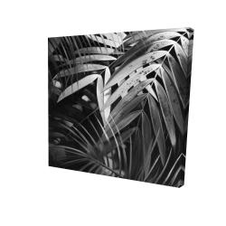 Canvas 24 x 24 - 3D - Monochrome tropicals leaves