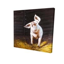 Canvas 24 x 24 - 3D - Happy pig