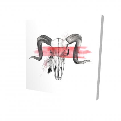 Crâne de bélier avec plume