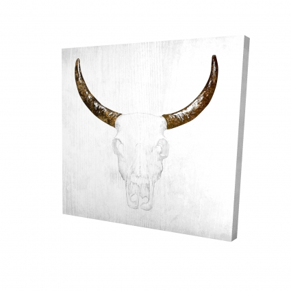 Bull skull with brown horns
