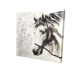 Canvas 24 x 24 - 3D - Alpha the white horse