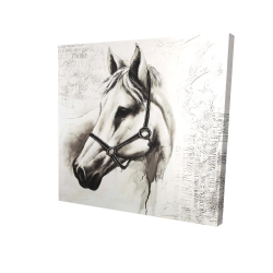 Canvas 24 x 24 - 3D - Flicka the white horse
