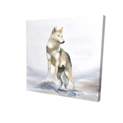Canvas 24 x 24 - 3D - Wolf