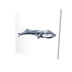 Canvas 24 x 24 - 3D - Watercolor whale
