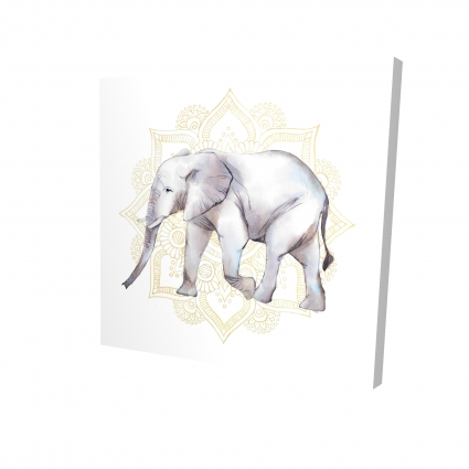 Elephant on mandalas