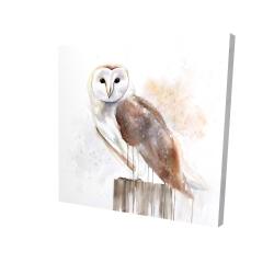 Canvas 24 x 24 - 3D - Barn owl