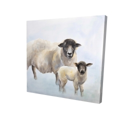Canvas 24 x 24 - 3D - Sheep and its baby
