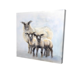 Canvas 24 x 24 - 3D - Sheep family