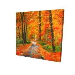 Canvas 24 x 24 - 3D - Autumn trail