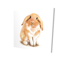 Canvas 24 x 24 - 3D - Lop-rabbit