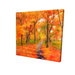 Canvas 24 x 24 - 3D - Autumn trail in the forest