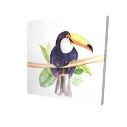 Canvas 24 x 24 - 3D - Toucan