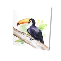 Canvas 24 x 24 - 3D - Toucan perched