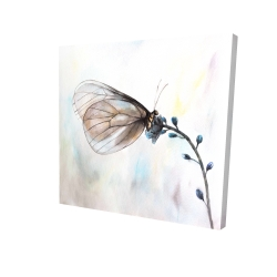 Canvas 24 x 24 - 3D - Butterfly on blue flowers