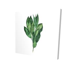 Canvas 24 x 24 - 3D - Bay leaves bundle