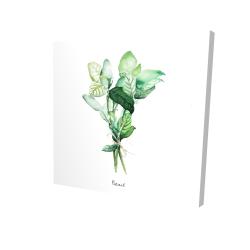 Canvas 24 x 24 - 3D - Tied up basil leaves bundle - en