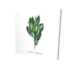 Canvas 24 x 24 - 3D -  bay leaves bundle - fr
