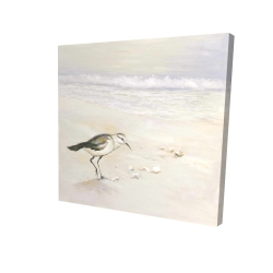 Canvas 24 x 24 - 3D - Semipalmated sandpiper on the beach
