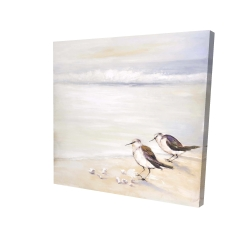 Canvas 24 x 24 - 3D - Two sandpipers on the beach