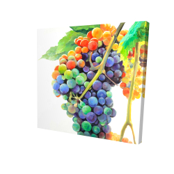 Canvas 24 x 24 - 3D - Colorful bunch of grapes