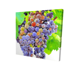 Canvas 24 x 24 - 3D - Bunch of grapes