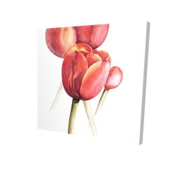 Canvas 24 x 24 - 3D - Blossoming tulips closeup