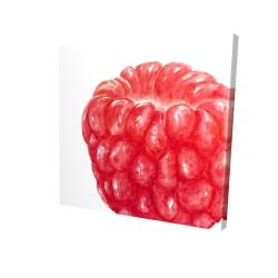 Canvas 24 x 24 - 3D - Raspberry