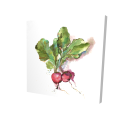 Canvas 24 x 24 - 3D - Watercolor radish