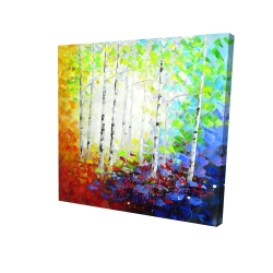 Canvas 24 x 24 - 3D - Colorful forest