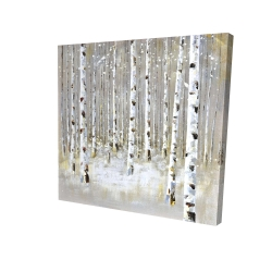 Canvas 24 x 24 - 3D - Birch forest by winter