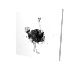 Canvas 24 x 24 - 3D - Proud ostrich