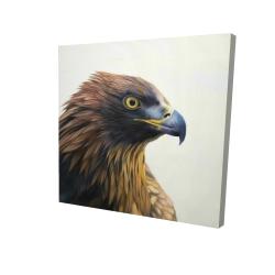 Brown-headed eagle