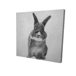 Canvas 24 x 24 - 3D - Funny gray bunny