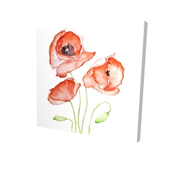 Canvas 24 x 24 - 3D - Watercolor poppies